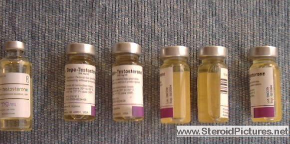 testex steroid dosage