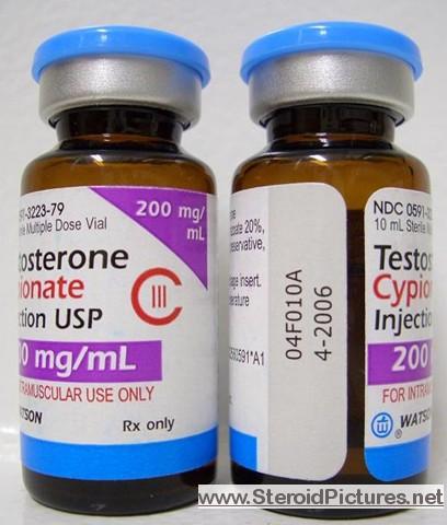 testoviron steroid cycle